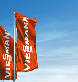 Viessmann Flags